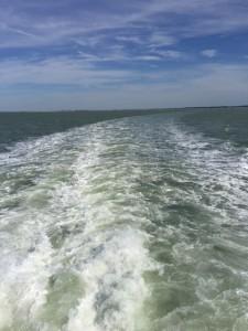 Et toujours être autant émerveillée par l'immensité de l'Océan