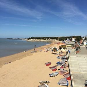 Ma plage que je n'avais jamais vue avec autant de planches à voile couchées sur le sable