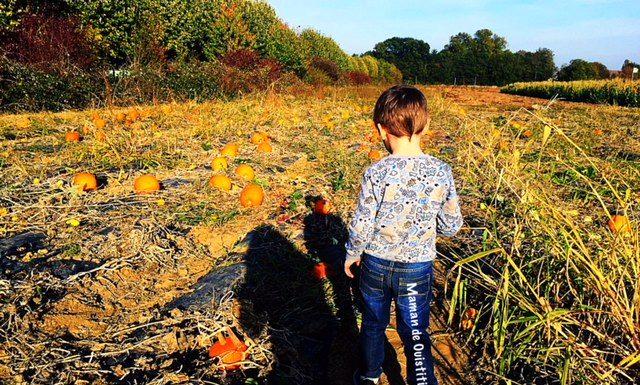 Halloween-vacances-toussaint-cueillette-servigny