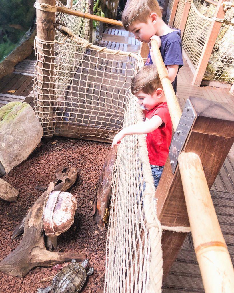 avril - mai - aquarium - la rochelle