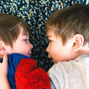 entre frères-complicité-amour fraternel