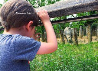 vacances - été - idée sortie - zoo